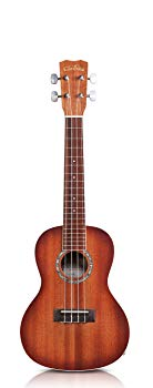 15CM-E Concert Acoustic-Electric Ukulele