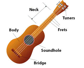 ukulele-anatomy