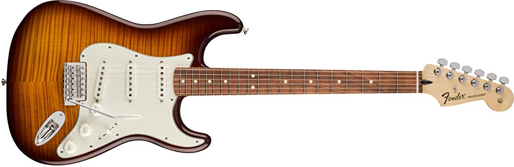 Standard Stratocaster Electric Guitar