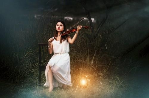violin-2902804_640